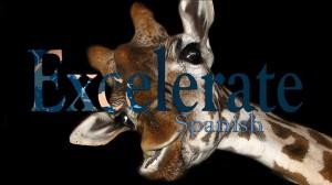 Featuring giraffes!